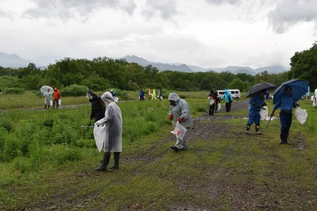 和賀川清掃活動
